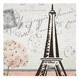 Hydrangea Paris Grey 2