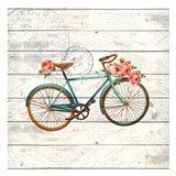 Carte Postal Bike 1