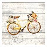 Carte Postal Bike 2
