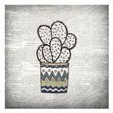Newspaper Cactus 2