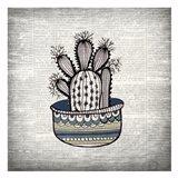 Newspaper Cactus 3