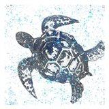 Splatter Turtle