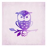 Purple Pink Owl 1