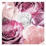 Rose Blooms 1