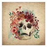Floral Skull 2 v2