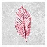 Pink Leaf 1