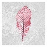 Pink Leaf 2