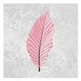 Pink Leaf 3