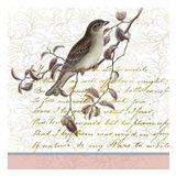 Serenity Birds 1