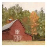 Country Fall 4
