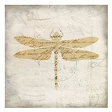 Dragonfly Letters 2