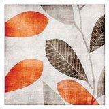 Gray Orange Leaves 1