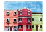 Vibrant Homes 3