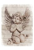 Angelic Nature