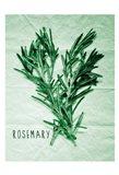 Rosemary Paper Scraps