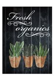 Fresh Organics 1