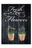 Fresh Organics 2
