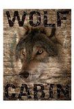 Wolf Cabin 1