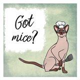 Got Mice