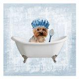 Bath Giggles 4