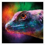 Party Lizard