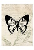 Vintage Insects Two