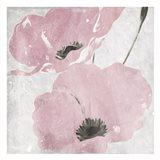 Mellow Blush Floral