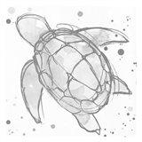 Minimal Sketch Turtle Grey