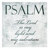 Bold Salvation