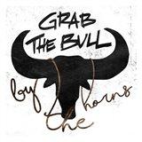 Grab The Bull