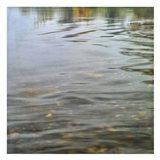 Riverrock 2