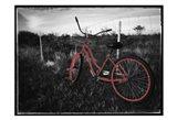 Crimson Bike