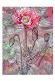 Deep Blossom 1