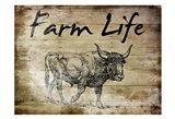 Farm Life Bull 2
