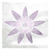 Soft Texture Flower