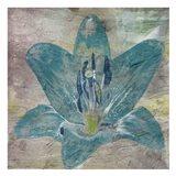 Vibrany Lily 2