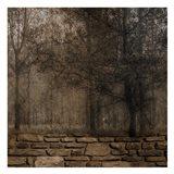 Stone Wall Landscape 2