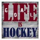 Hockey Life 2