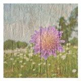 Vintage Bloom 2