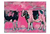 Pink Cows 1