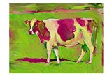 Pink Cow 2