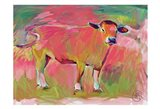 Pink Calf 2