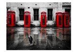 London Phone Booths Bird