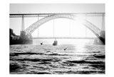 Portugal Porto BW Bridge