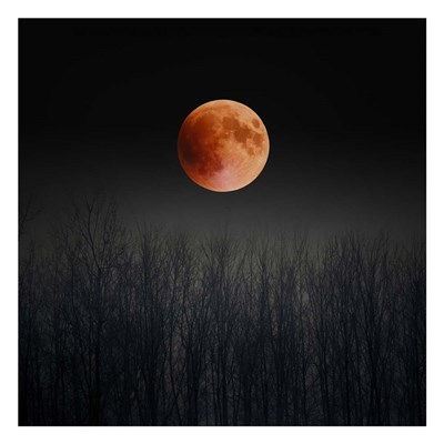 Blood Moon Poster by Tracey Telik for $18.75 CAD