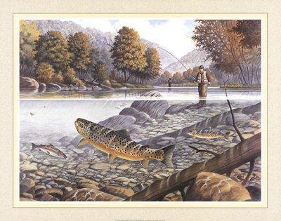Jumping Trout Poster by Ron Jenkins for $28.75 CAD