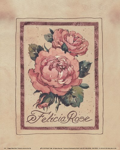Vintage Felicia Rose Poster by Jerianne Van Dijk for $7.50 CAD