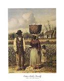 Cotton Picker Family
