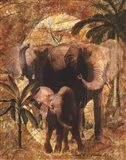 Jungle Elephants