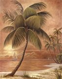 Island Palm III